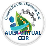 Aula Virtual CEIR