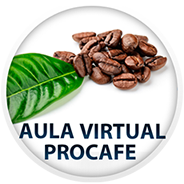 Aula Virtual PROCAFE