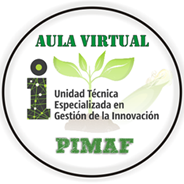 Aula Virtual PIMAF