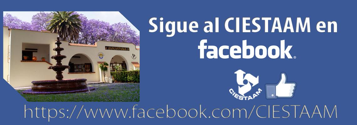 facebook_ciestaam