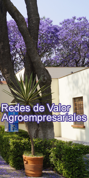 Redes de valor Agroempresariales