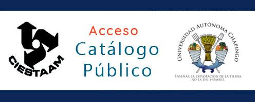 catalogo en línea